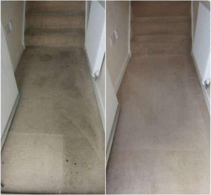 upholstery-and-carpet-cleaning-1